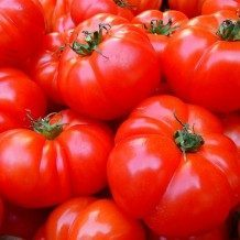 pile of tomatoes