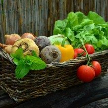 basket of vegetables for a healthy mood