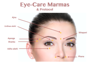 Women's Face with Ayurvedic Marma points Listed