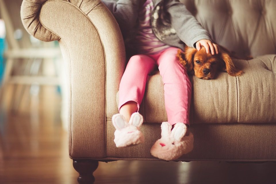 child in neon pink pants sitting on a beige couch with a brown puppy resting head on the child's leg