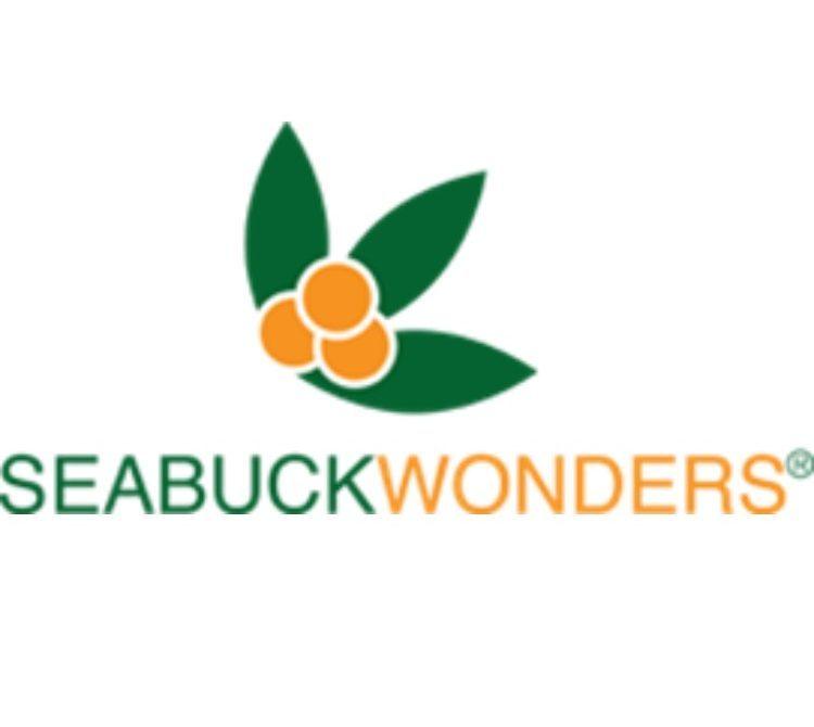 Seasick wonders logo