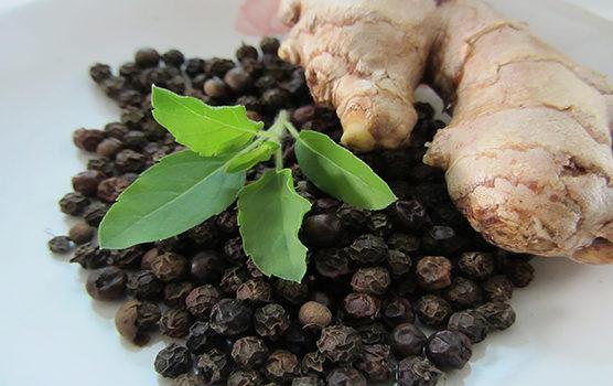 Herbs for Ayurvedic Medicine