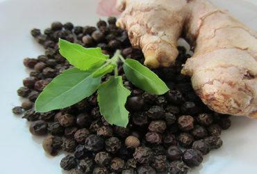 ayurvedic-herbs-370x250.jpg