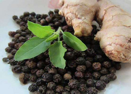 ayurvedic-herbs-555x400.jpg