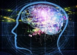 brain-diagram--260x188.jpg
